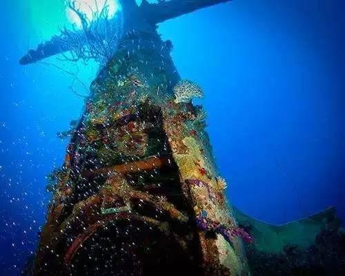 群岛附近的罗伊-那慕尔潜水时发现了一片飞机坟场